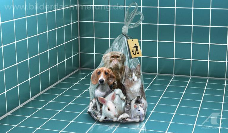 Illustration zum Thema Tierversuche sind Lebensverschwendung