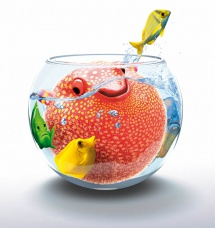 illustration-character-kugelfisch-kyocera-1