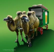 illustration-fotorealistisch-kamel-gespann-1