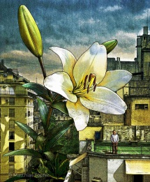 illustration-illustrativ-wunder-des-altags-1