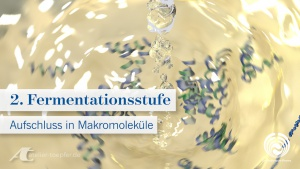 Animationsfilm aufgeschlossene Makromoleküle